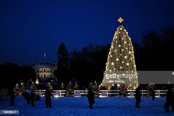 National Christmas Tree and The White House, Washington, DC