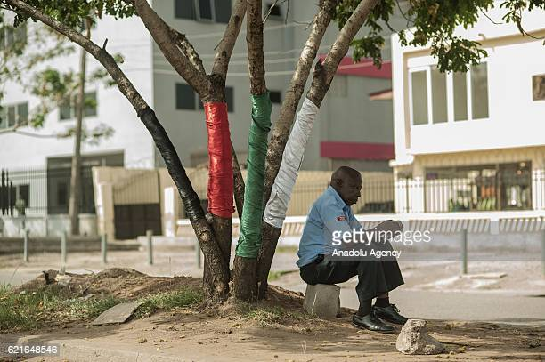 National Democratic Congress party's flag colors are seen on a tree ahead of general elections which will be held on December 7 in Accra Ghana on...