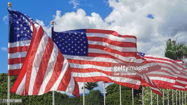 usa national flags in a row - hawaii flag stock pictures, royalty-free photos & images