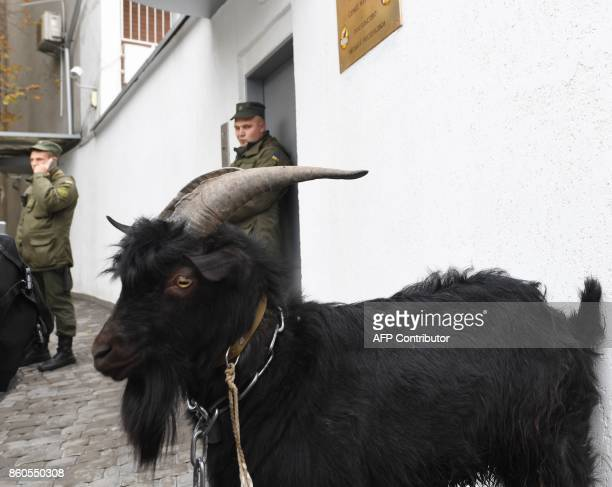 National Guard servicemen stand guard close to a goat tethered by the Ukrainian farright National Corpus Ukrainian party outside the Czech Embassy...