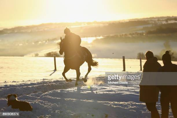 National hunt trainer Nigel TwistonDavies and assistant Carl Llewellyn look on alogside dog Stan during morning gallops in heavy snow on December 12...
