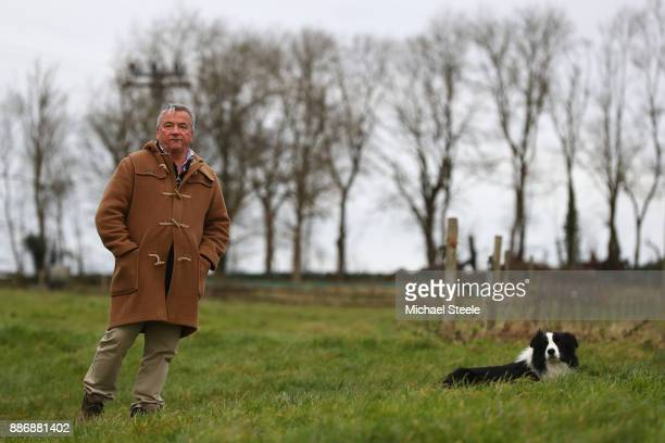 National Hunt trainer Nigel TwistonDavies looks on alongside his dog Stan as the second string work out on the polytrack gallop at Grange Hill Farm...