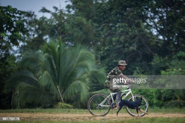 A National Liberation Army guerrilla rides a bicycle alongside his dog in a remote village in Choco Department Colombia on Friday Nov 17 2017 The...