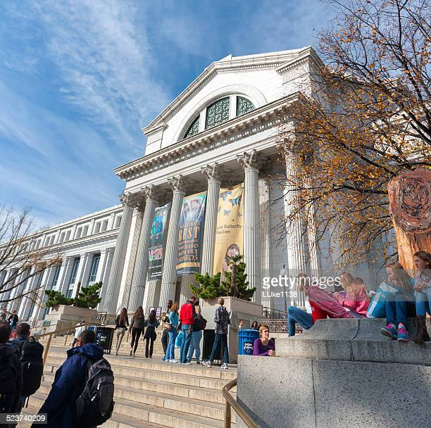 national museum of natural history - natural history museum stock pictures, royalty-free photos & images
