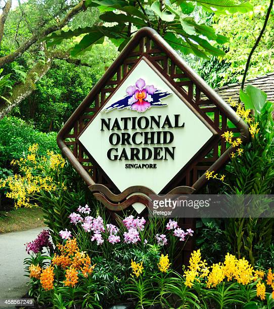 national orchid garden, singapore - singapore botanic gardens stock photos and pictures