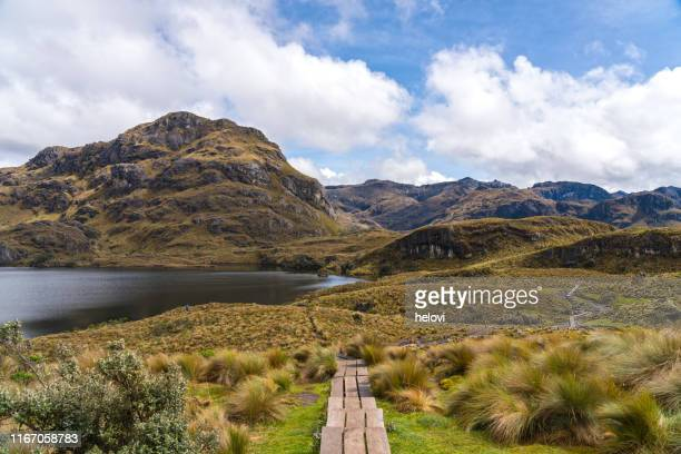 national park  las cajas mountains - ecuador stock pictures, royalty-free photos & images