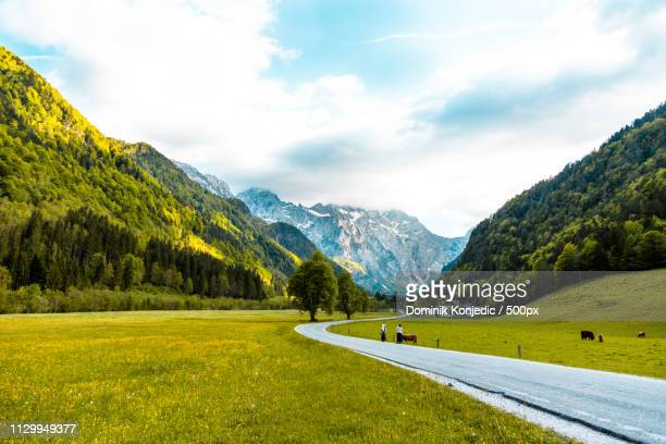 national park logar valley - slovenia - dominik konjedic stock pictures, royalty-free photos & images