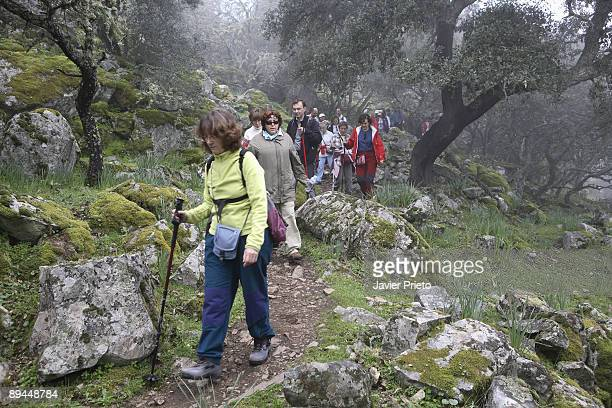 National Park of Monfragüe Caceres Extremadura Virgin meadows and Mediterranean forests National and Biosphere Reserve Trekkers near the Castle of...