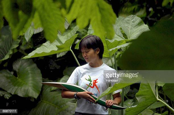 National Parks employee Amelia Tong inspects the Melbourne 2006 Queen's Baton at the picturesque Singapore Botanic Gardens during the Singapore leg...