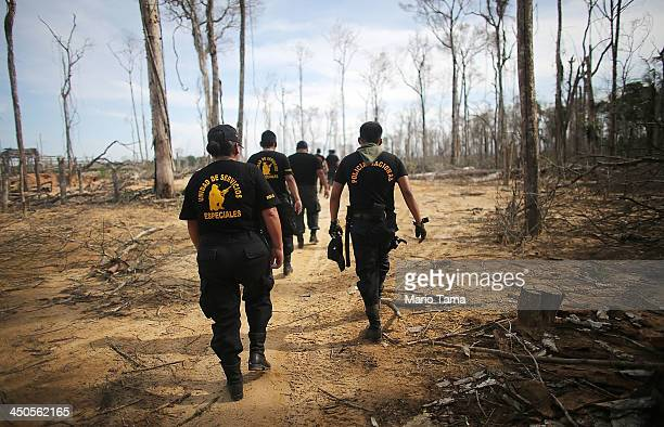 National Police officers search for illegal mining operations in a deforested section of the Amazon lowlands ravaged by mining on November 17 2013 in...