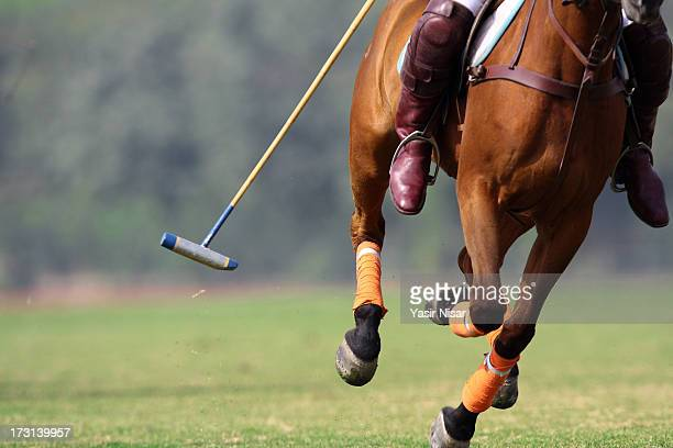 national polo championship - polo stock pictures, royalty-free photos & images