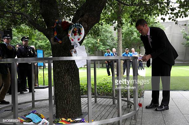 National September 11 Memorial Museum CEO Joe Daniels ties a ribbon on the Survivor Tree in honor of the victims of the Orlando nightclub attack on...