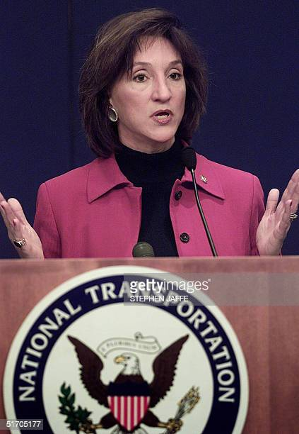 National Transportation Safety Board Chairman Marion Blakey speaks at a press briefing 08 February 2002 in Washington, DC regarding the 12 November...