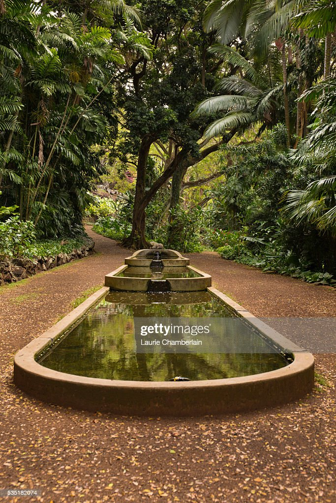 Allerton Garden Stock Photos and Pictures Getty Images
