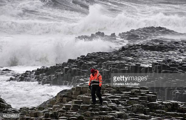National Trust Ranger patrols the famous hexagonal rocks at the Giants Causeway on October 21, 2014 in County Antrim, Northern Ireland. The site has...