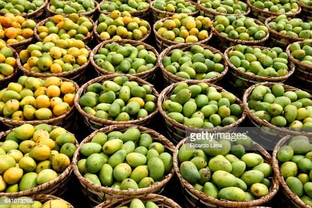 Native Amazon Fruit At Ver-o-Peso Fair