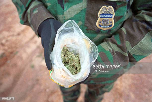 Native American Patrol Officer Holds A Bag Of Marijuana On The Tohono O'Odham Indian Reservation In Arizona November 2000 Dna Testing At A Lab...