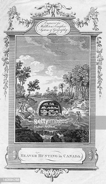 Native American tribesmen hunting beaver Canada circa 1770 The hunters are using rifles and bows and arrows to kill the beavers at their dam which is...