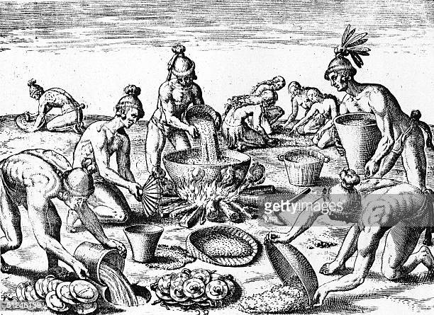 1565 Native Americans prepare for a feast by boiling food in a large earthenware cauldron grinding herbs and filling a hole in the ground with water...