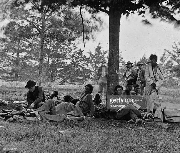 Native Americans served both the Union and Confederacy At the outbreak of war the minority party of the Cherokees gave its allegiance to the...