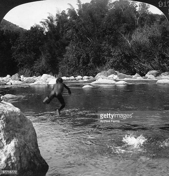 Native boys in a fine fresh water swimming hole beside the bamboo trees Jamaica
