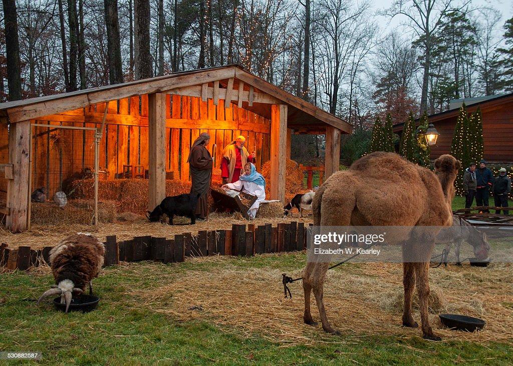 christmas lighting news photo