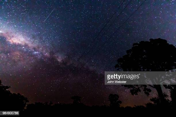nattai milkyway - the webster stock pictures, royalty-free photos & images