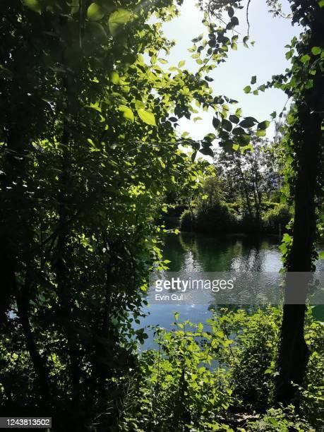 natur  landscape - natur stock pictures, royalty-free photos & images
