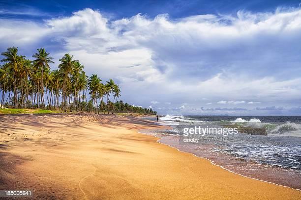 Natural Beach of Sri Lanka