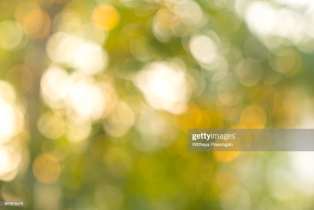Natural Bokeh,blurred bokeh. : Stock Photo