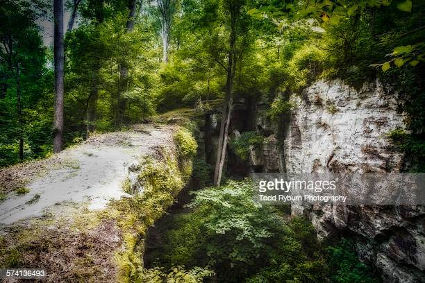 natural bridge - national forest stock pictures, royalty-free photos & images