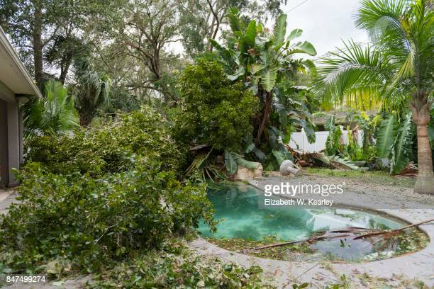 natural disaster aftermath - 2017 hurricane irma stock pictures, royalty-free photos & images