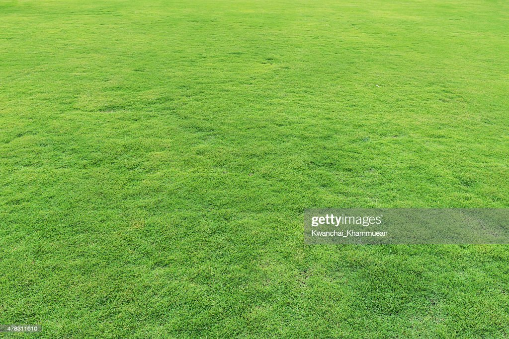 grass field from above. Wonderful Above Natural Fresh Green Grass Field Throughout Grass Field From Above S
