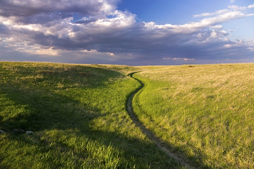 Natural Grassland Nose Hill Public Park Calgary Alberta Springtime 962974532