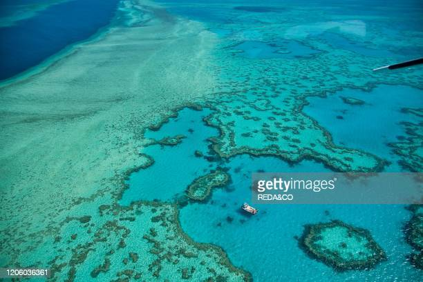 Natural Great Barrier Reef in Queensland. Aerial view of nature paradise with magnificent colors..