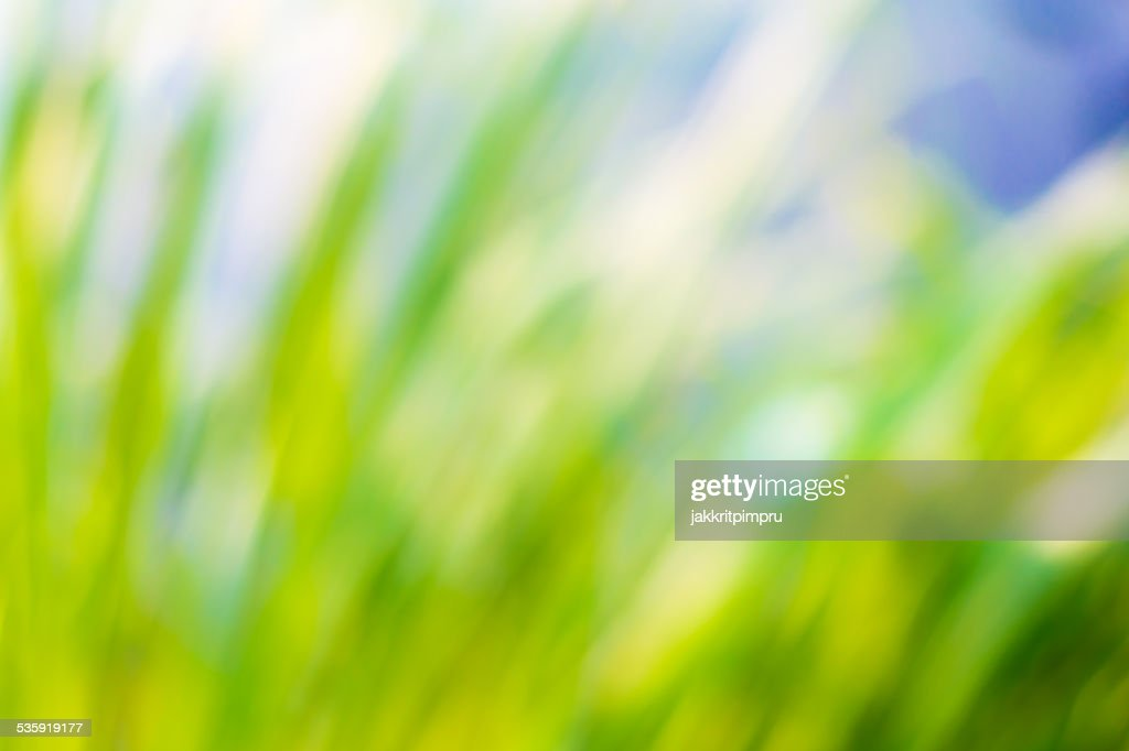 Natural green and blue bokeh background : Stock Photo