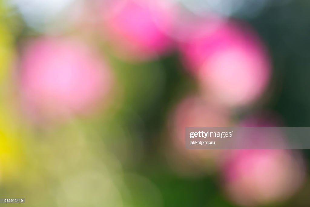 Natural green and pink bokeh background : Stock Photo