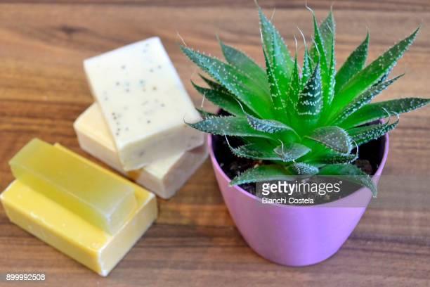 Natural herbal soaps