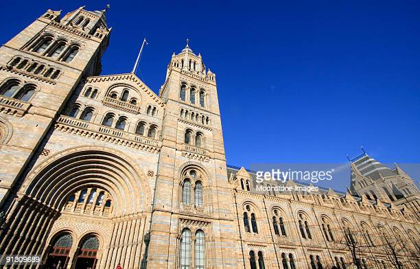 natural history museum in london, england - national landmark stock pictures, royalty-free photos & images