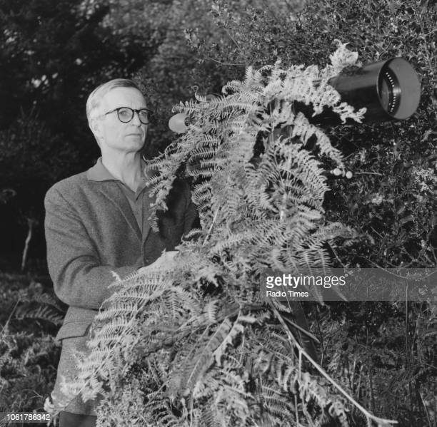 Natural history television presenter Eric Ashby pictured camouflaging a camera with ferns in the New Forest photographed for Radio Times in...