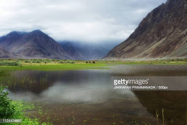 Natural Landscape In Nubra Valley