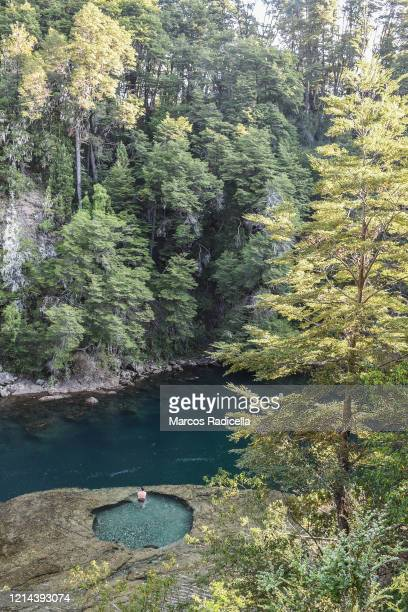 natural paradise in patagonia - radicella stock pictures, royalty-free photos & images