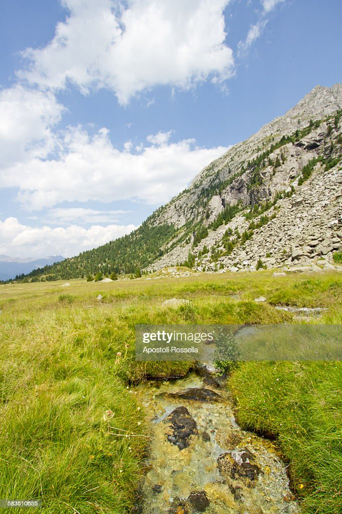 Natural park Adamello : Stock Photo