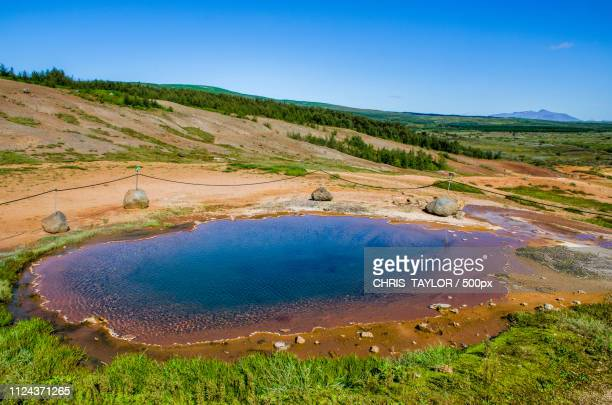 natural pool - pond stock pictures, royalty-free photos & images