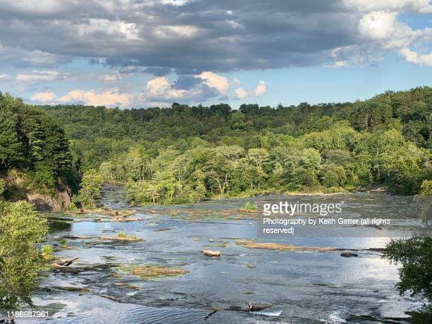 natural pristine scene: esopus creek rushing over rocks surrounded by green trees in summer - ソーガーチーズ ストックフォトと画像