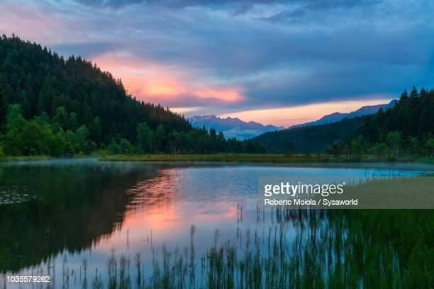 Natural Reserve of Pian di Gembro, Valtellina