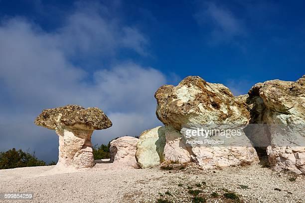 natural stone mushrooms, bulgaria - geologia foto e immagini stock