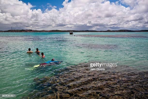 CONTENT] Natural Swimming Pools at Maragogi Alagoas Brazil