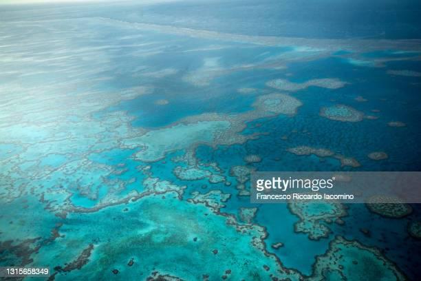 natural textures of great barrier reef from above, queensland, australia. - francesco riccardo iacomino australia foto e immagini stock