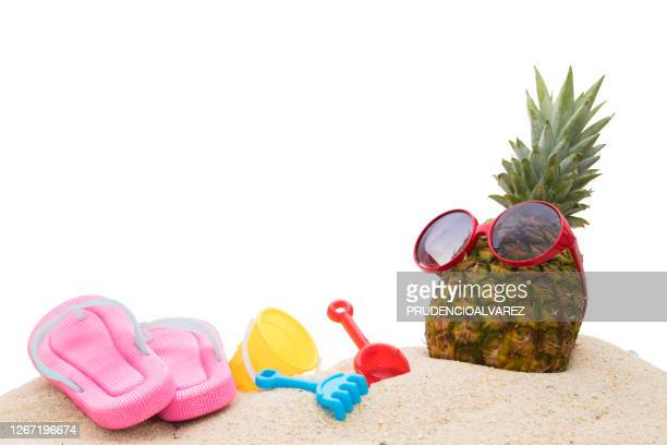 natural tropical pineapple wearing sunglasses with
